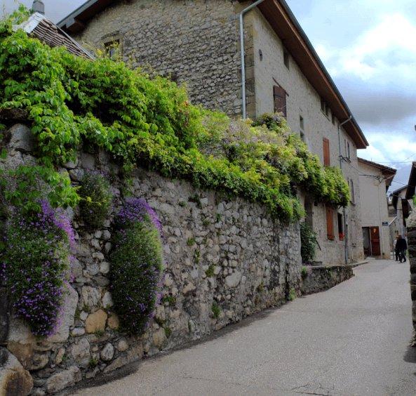 rue_vieux_bourg_2