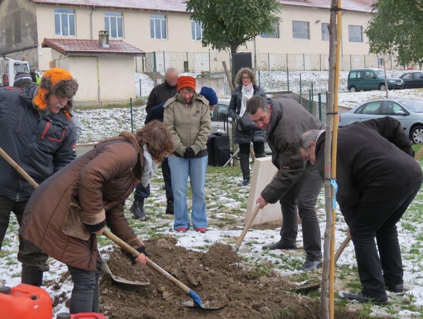 Plantation_droits_homme_m
